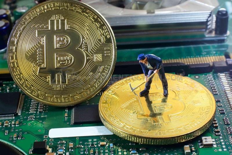Đào Bitcoin là một thuật ngữ trong giao dịch tiền điện tử
