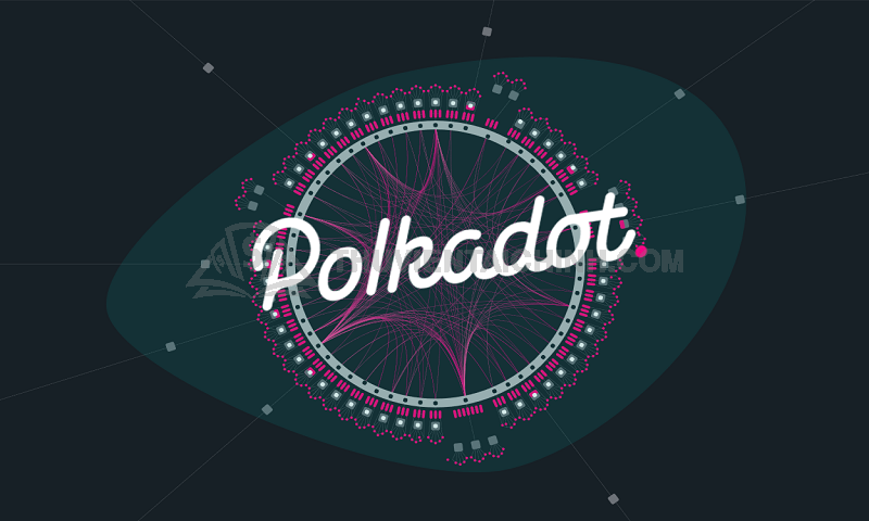 Những thông tin liên quan đến Polkadot