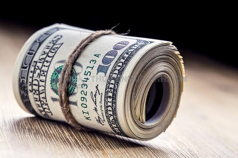 """Những nhà đầu tư """"cứng tay"""" khi mua USD Coin"""
