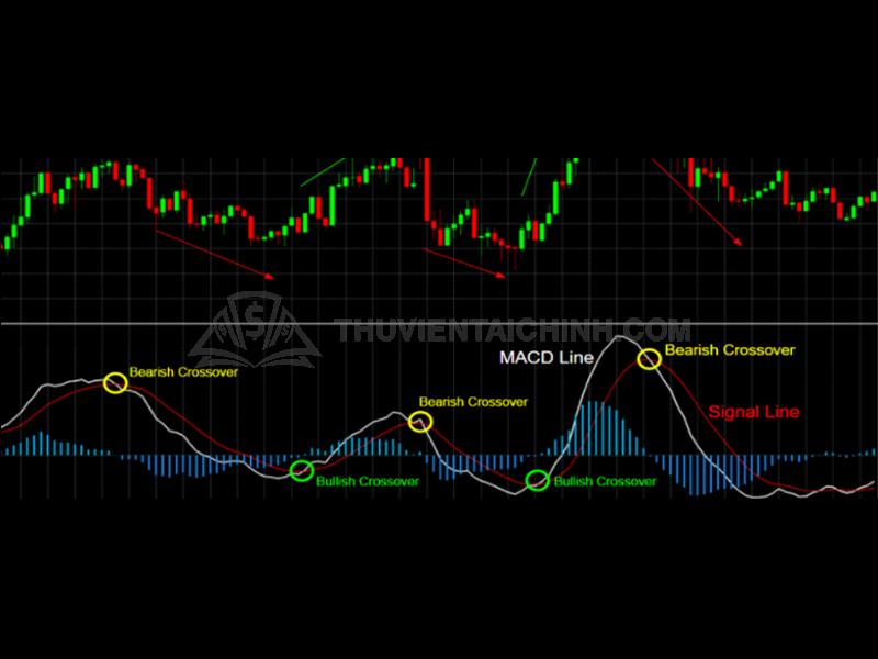 """3 điểm """"vàng"""" giúp trader xác nhận tín hiệu phân kỳ trong giao dịch"""